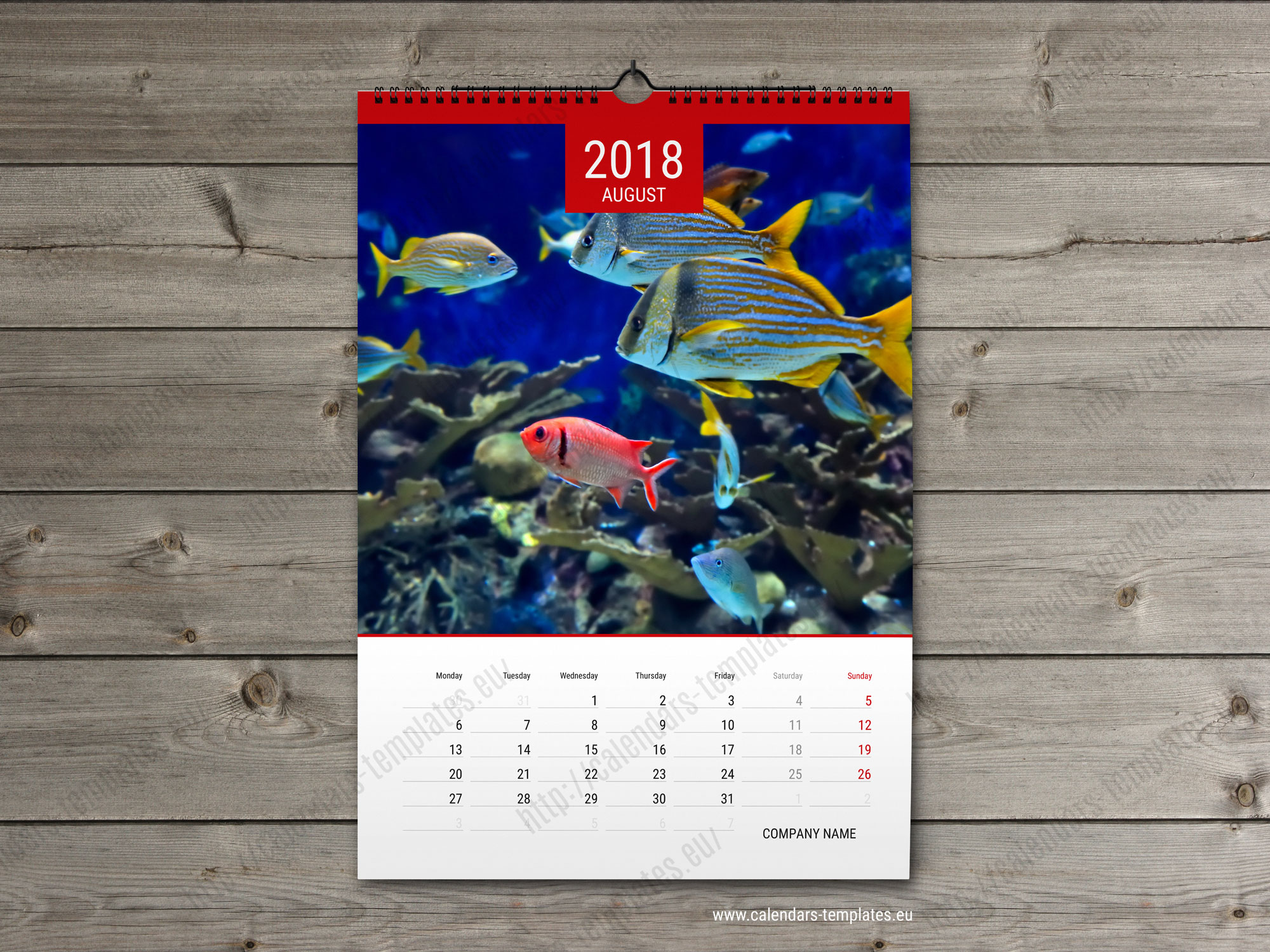 Calendar 2018. Printable custom yearly photo calendar